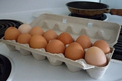 Carton of fresh eggs