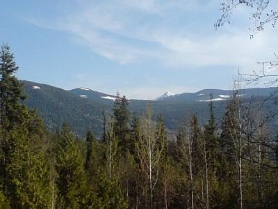 Une belle vue des montagnes et de la forêt où habitent Aurélien et Elaine.