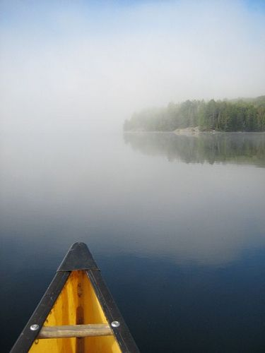 True paddling dreams would have me paddling into the mist like this here, where a thick blanket of fog evanesces in the early morning.