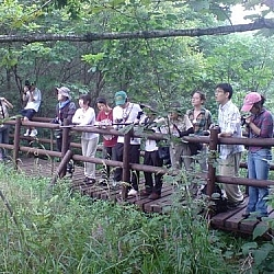 Travel and trekking go together because they bring people together, like here where onlooking Korean tourists are awed by an ecologically sensitive wetland in Jirisan National Park.