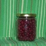 Small jar of dehydrated cranberries against a green background with red and white stripes