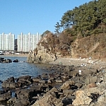 My first impressions of South Korea were tainted by litter, such as at this beach in Molundae Park, Busan.