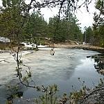 Creek along Heron Trail.