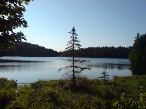 My Ultimate Ontario Trekking Bucket List includes this site on Faya Lake along Algonquin Provincial Park's Highland Trail.