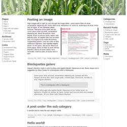 A screenshot of the demo Atahualpa WordPress theme.