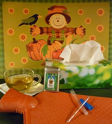 The essentials of cold and flu season include a hot water bottle, a thermometer, tissues, and Canadian Shield tea.