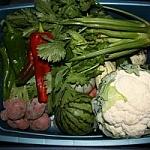 Dalew Farms food bin