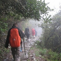Backpackers on the Inca Trail headed to Machu Picchu.