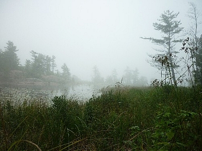 View of a bay in the mist along a grassy shoreline seen while day hiking near Killarney's lighthouse.
