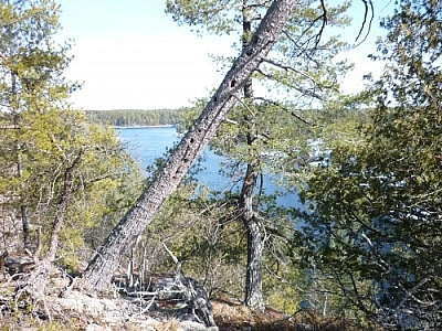 View of French River from a Dokis First Nation hiking trail