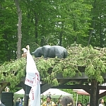 Wooden black bear sculpture seen at the Dokis First Nation powwow.