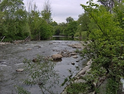 Lower Don River scenery