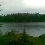 Scenery seen while walking for wildlife at Esker Lakes Provincial Park.