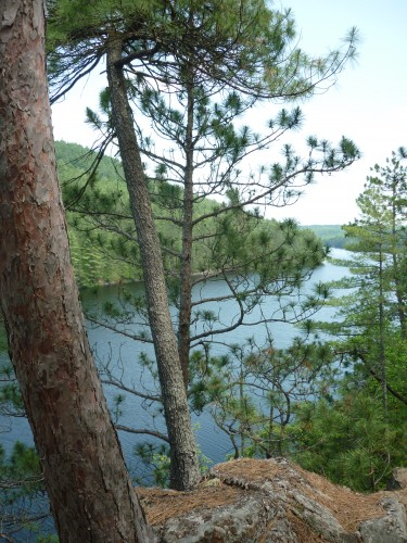 View of the Mattawa River while hiking the History Loop on Etienne Trail.