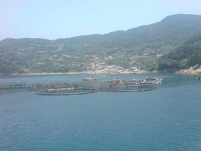 Fishing village where I stayed while exploring Yokji Island.