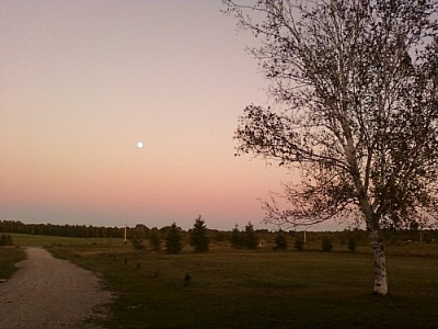 Enjoying the rural scenery while wwoofing at home and watching the moon rising over the fields at dusk.