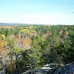 An autumn-coloured forest as seen from the top of Granite Ridge.