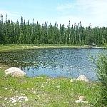 Scenic spot along Halfway Lake Park's Hawk Ridge Trail.