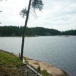 Tree overhanging a lake along Hawk Ridge Trail.