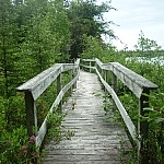 Wooden bridge along Hawk Ridge Trail, Halfway Lake Park.