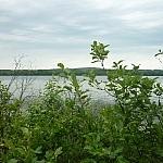 Last view of Halfway Lake along Hawk Ridge Trail.