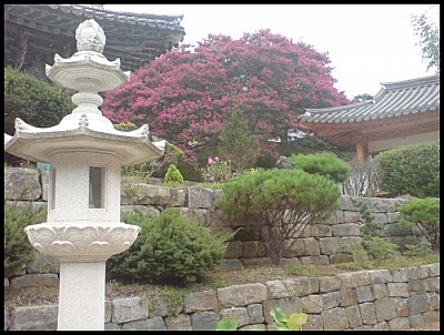 Our Jirisan wetland eco-tour ended at Daewon Temple, where this landscaped scene was photographed.