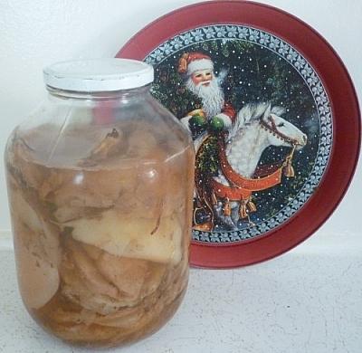 Jar of spare kombucha SCOBYs
