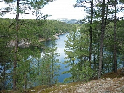 View of the westernmost bay of Threenarrows Lake along Killarney's La Cloche Silhouette loop trail.