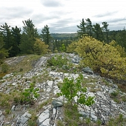 White quartzite of trekking Killarney's La Cloche Silhouette loop trail.