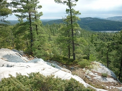 Breathtaking windswept scenery of Killarney's La Cloche Silhouette loop trail.