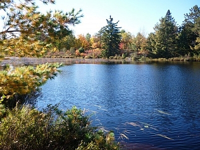Fall colours seen at Lac Barbotte while walking in French River.