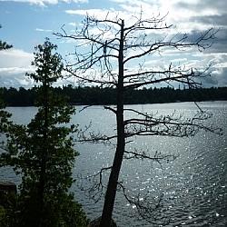 Lake Nipissing from Coastal Trail, Mashkinonje Provincial Park