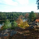 Lake of the Woods surrounded by an autumn-coloured forest