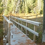 A close-up view of the same wooden bridge which had been seen from afar at the start of the trail.