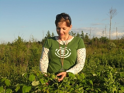 Lee-Ann Chevrette picking wild ingredients for her Boreal Forest Teas.