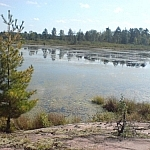 Wetland scenery from Martin Pond seen while walking for wildlife in Mashkinonje Provincial Park.
