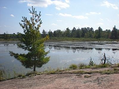 Landscape scene of Martin Pond, Mashkinonje Park, by Matt Vrijburg.