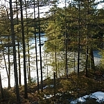 Springtime scenic view at the McCrae Lake Conservation Area.