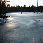A lowering sun glistening on the thinly-covered icy surface of a small body of water.