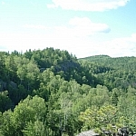 A panoramic hilly forest view seen from the McKenzie Trail