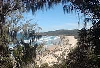 An oceanside beach framed by leafy greenery, seen in Australia.