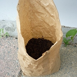 Top view of a bag of worm castings shows the contents.