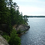 A typical view of the Lake Nipissing shoreline which can be seen along Pebble Beach Trail while visiting Mashkinonje Provincial Park.