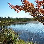 Lac Clair scenery along Pioneer Trail in French River.