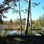 Scenic view of Lac Clair seen while walking in French River on the Pioneer Trail.
