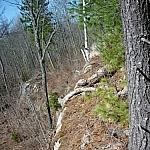 Rock outcrop down Pine Creek trails, West Arm