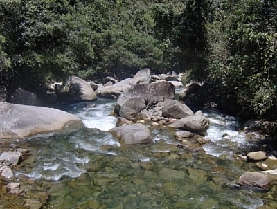 A rocky riverbed in Parque Podocarpus.