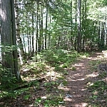 A clear, narrow path along Semiwite Lake Trail