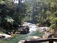 Rocky river seen while travel and trekking in Ecuador