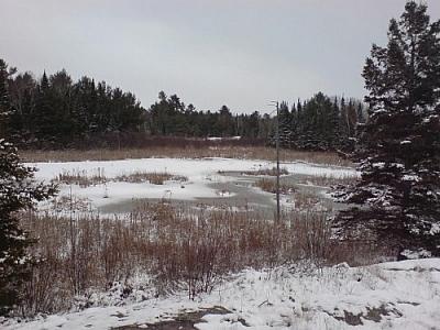 A frozen pond, Mashkinonje Provincial Park